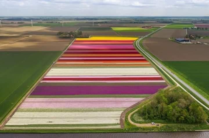 Foto DŮLEŽITÉ - dovážíme mobilheimy z Nizozemí (info v textu níže).